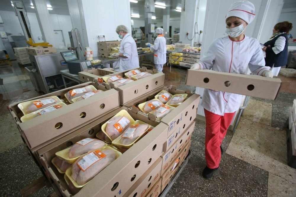 Эксперты предупредили об опасности мытья курицы перед приготовлением