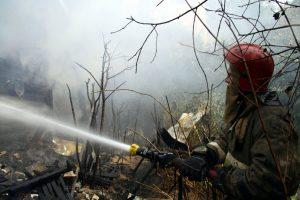 В Красносельском районе сгорел садовый дом