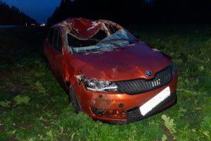 На трассе «Нарва» автомобиль сбил лося