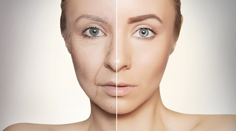 Ученые рассказали, почему организм перестает бороться со старением