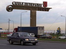На Пулковском шоссе утка с птенцами спровоцировала небольшое ДТП