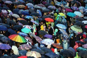 В выходные в Ленобласти обещают дожди и грозы