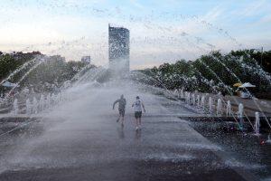 МЧС предупредило о жаре и грозах в Ленобласти