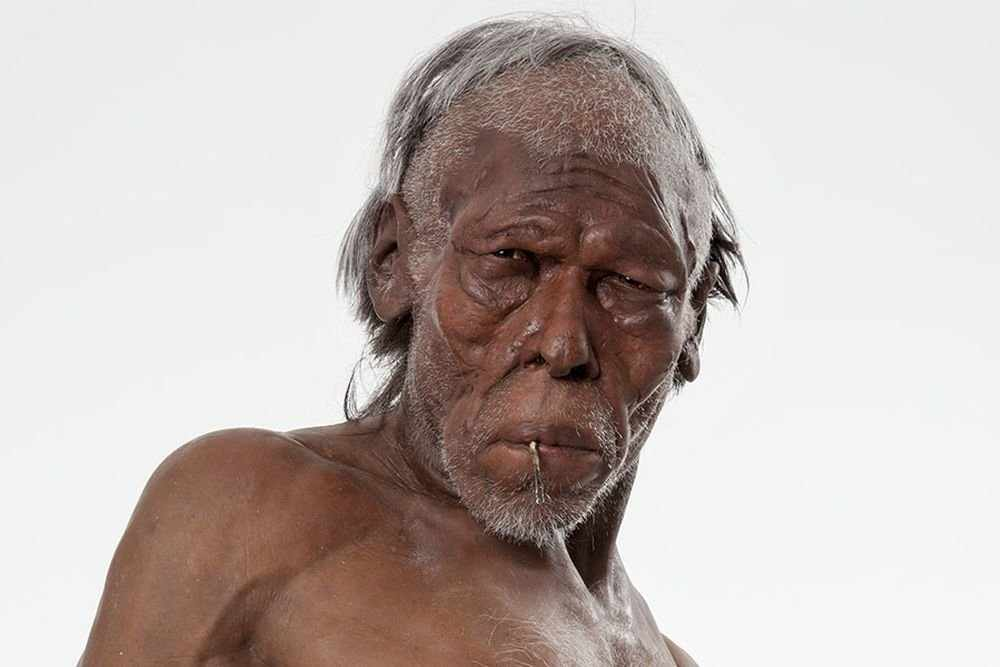 Найденный в Греции череп заставит переписать историю человечества