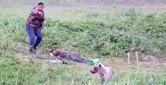 На Камчатке медвежонок разбудил уснувших на пляже мужчин