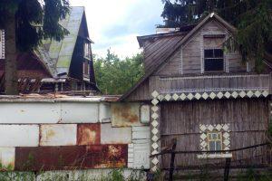 Смольный поддержит садоводства, в которых живут петербуржцы
