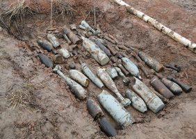 В лесу в Мурино обнаружили 1,5 тыс. боеприпасов времён войны