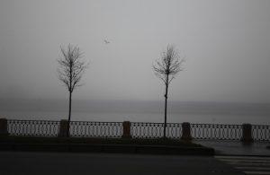 В воскресенье в Ленобласти будет туман