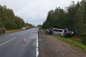 На Киевском шоссе столкнулись три микроавтобуса: погибли два человека
