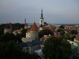 Власти Эстонии отреагировали на введение Россией электронных виз