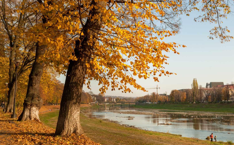 В каких регионах России ожидается теплый ноябрь?