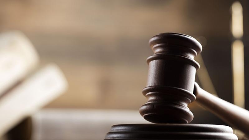 Суд вынес приговор маме изрезанной вилкой двухлетней девочки