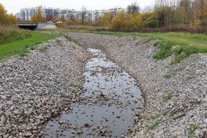 В Петербурге очистили Муринский ручей