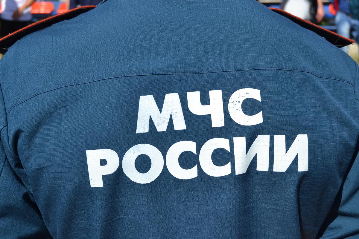 В Нижнем Новгороде зарезали и сожгли беременную девушку