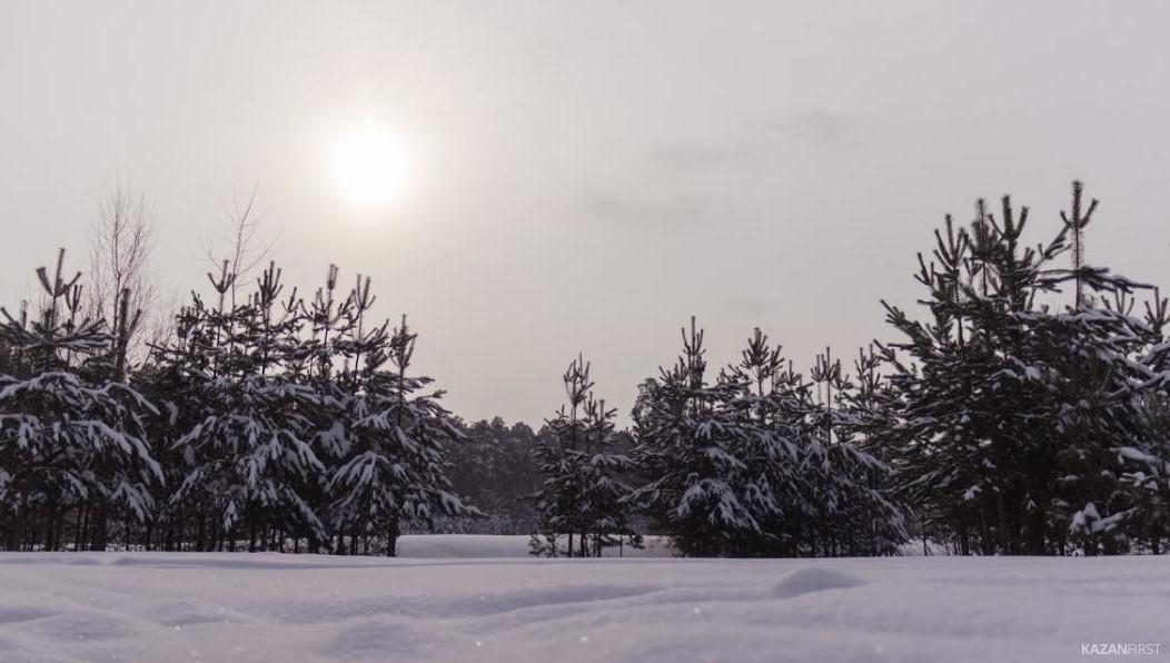 Гидрометцентр России: январь будет снежным