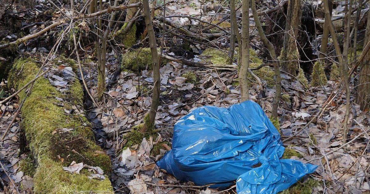 Человеческие ноги нашли в пакете в лесу в Нижегородской области
