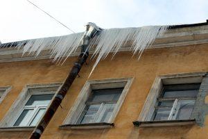 Зима всё-таки пришла: жителей Ленобласти ждут морозы