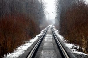 В выходные в Ленобласти ожидаются туман и гололедица