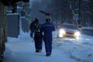 Последние дни года в Ленобласти будут снежными