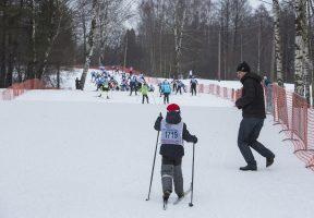 В КИО заявили, что спортшкола на Выборгском шоссе подлежит передаче РПЦ