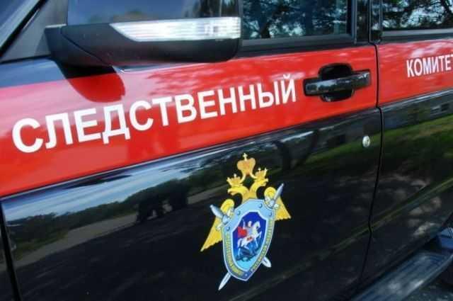 В Кудымкаре убиты двое детей