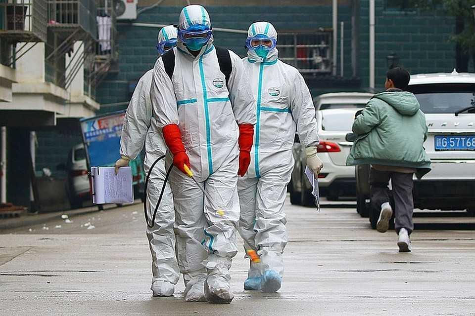 В Минздраве назвали сроки появления коронавируса в России