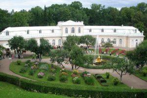 Оранжерею в Петергофе восстановят