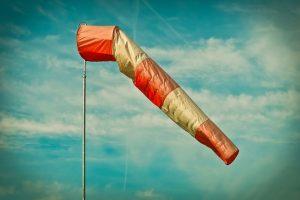 В выходные в Ленобласти усилится ветер