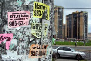 В Петербурге закрыли сеть борделей