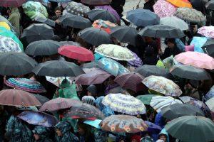 Тепло и дожди: синоптик рассказал о погоде в Петербурге в субботу