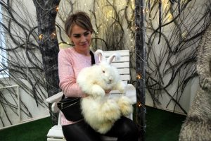 Братья наши ушастые: в Петербурге прошёл фестиваль кроликов