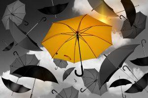 В Ленобласти 8 января усилится ветер