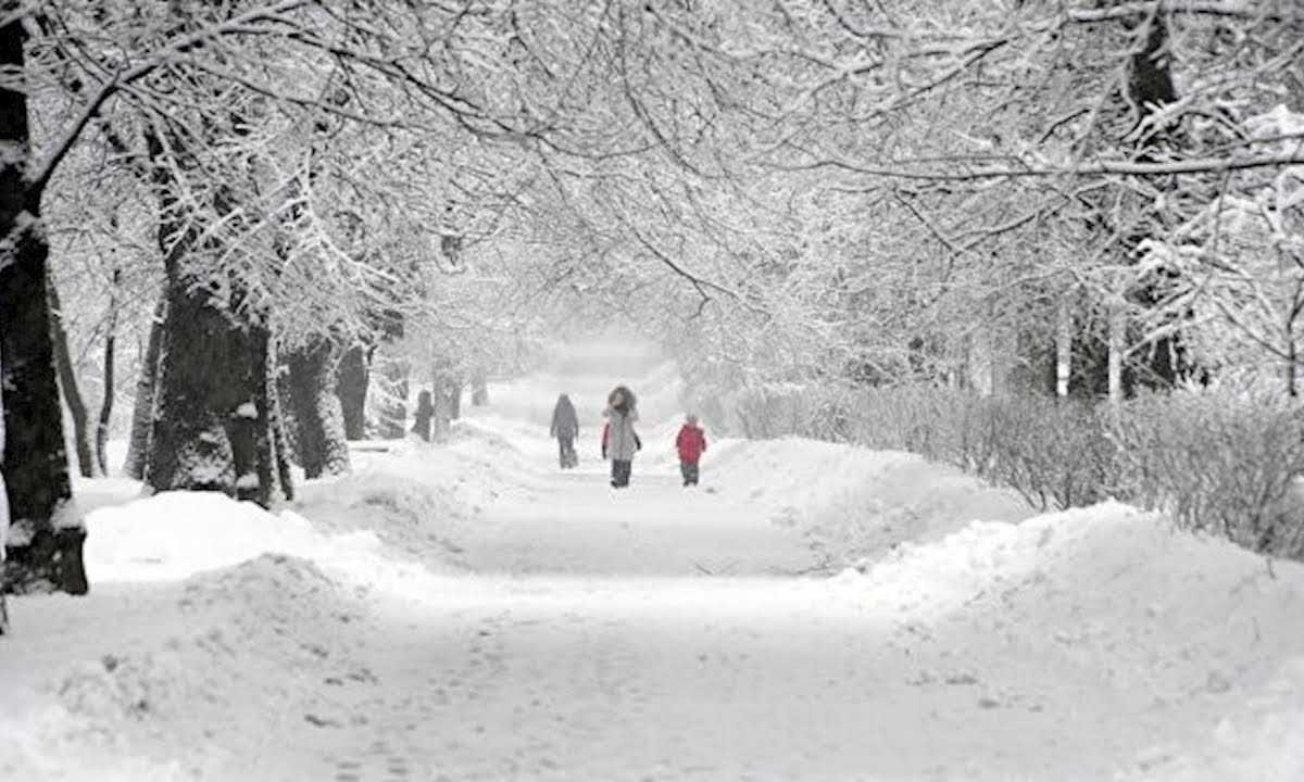 Синоптики пообещали погодные рекорды в России