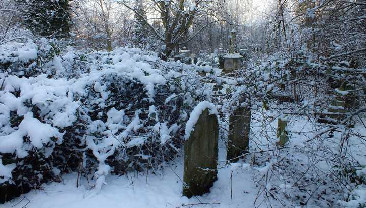 Мужчина изнасиловал несовершеннолетнюю девушку на кладбище в Тамбовской области