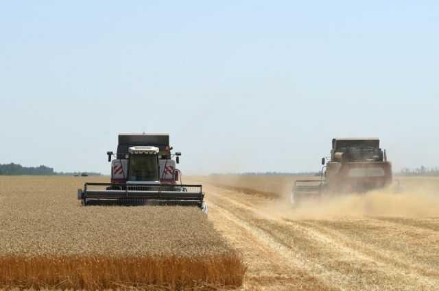 Чья в России земля? 5% сельхозугодий страны находятся в руках иностранцев