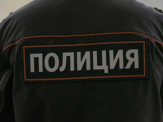Житель Мордовии ограбил и изнасиловал пожилую мать