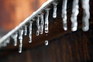 Минувший январь в российских столицах стал рекордно тёплым