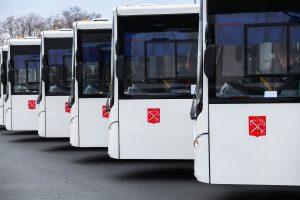 «Яндекс» за минуту показал один день из жизни наземного транспорта Петербурга