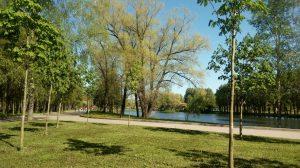 ГАТИ разрешила капремонт главного фонтана Московского парка Победы