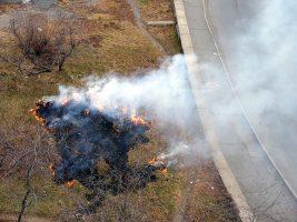 МЧС предупредило о раннем начале пожароопасного сезона