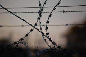 Мишустин ограничил передвижения через границу России