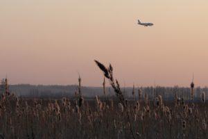 В Кубани потерпел крушение учебно-боевой самолёт — СМИ