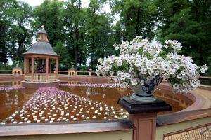 Надеемся на лучшее: Летний сад активно готовится к открытию