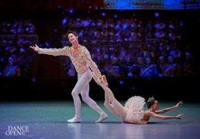 Балетный фестиваль Dance Open пройдёт в форме онлайн-марафона