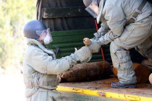 Эхо войны после Дня Победы: в Ленобласти нашли сразу 27 мин
