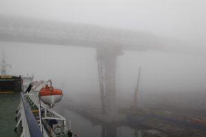 Жителей Ленобласти предупредили о тумане