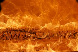 В МЧС предупредили о повышенной пожароопасности в Ленобласти