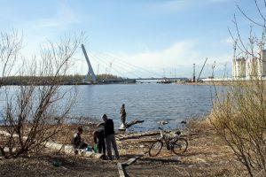 Построим всем миром: петербуржцы могут предложить идеи по благоустройству Южно-Приморского парка