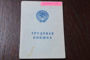 Премьер Мишустин подписал постановление об электронных трудовых книжках