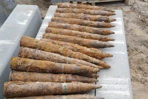 В лесу у деревни Таменгонт обнаружили больше 30 боеприпасов времён войны